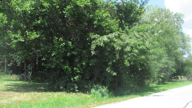 5608 Lenox Road - Photo 1