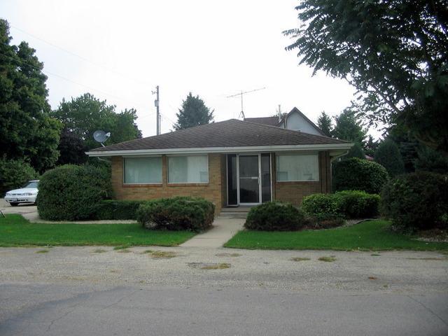204 S Theodore Street, Mcnabb, IL 61335 (MLS #09063575) :: The Dena Furlow Team - Keller Williams Realty