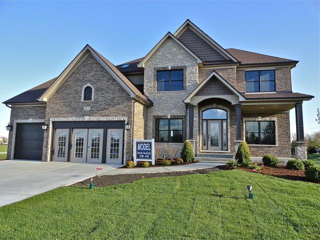 484 Deerfield Drive, Oswego, IL 60543 (MLS #09128699) :: O'Neil Property Group