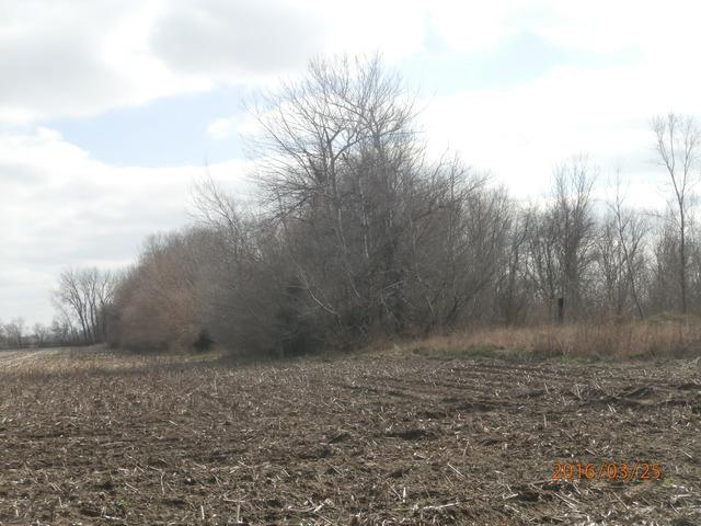 Lot 36-30-14W, Chebanse, IL 60922 (MLS #09165176) :: The Jacobs Group