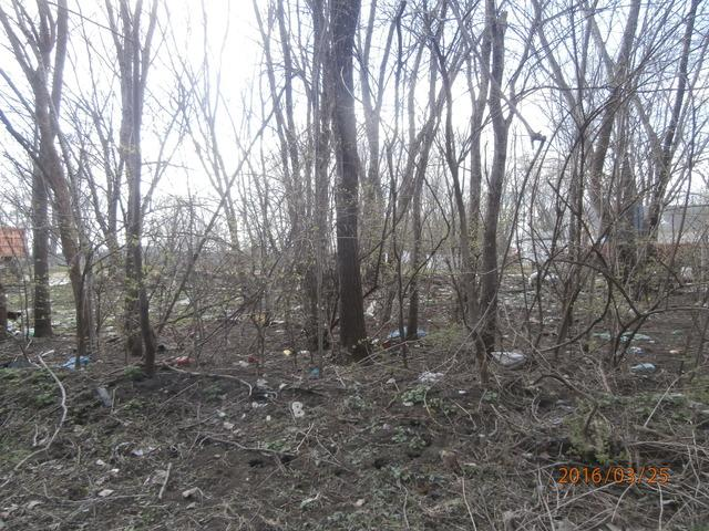 Lot 736-30-14W, Chebanse, IL 60922 (MLS #09165179) :: The Jacobs Group