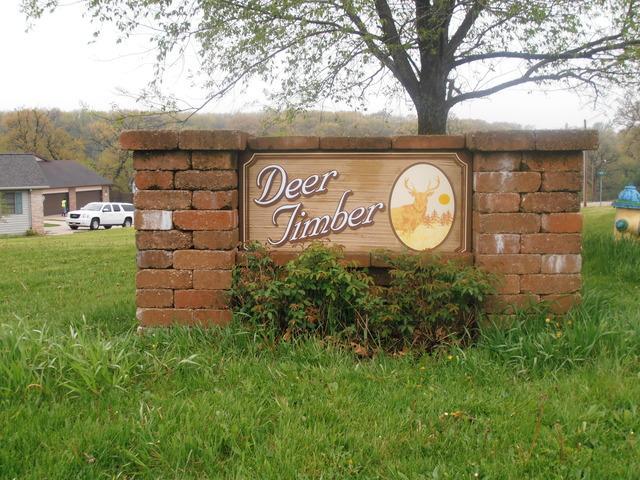 411 Deer Timber Lane - Photo 1