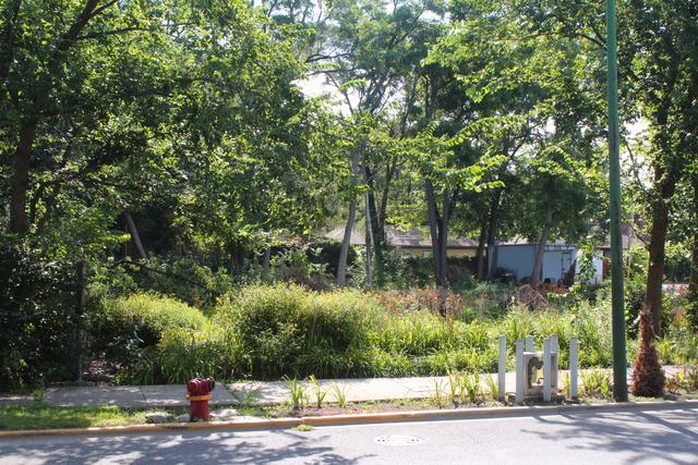 8931 S Western Avenue S, Chicago, IL 60620 (MLS #09410313) :: John Lyons Real Estate