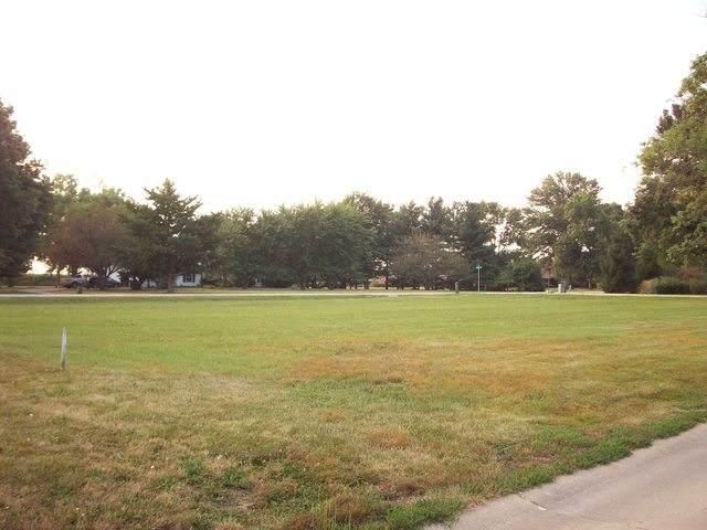 101 Jones Boulevard, Tuscola, IL 61953 (MLS #09480607) :: Schoon Family Group