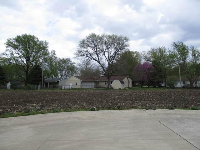 Lot 6 Fina Drive, Tuscola, IL 61953 (MLS #09487174) :: Ryan Dallas Real Estate