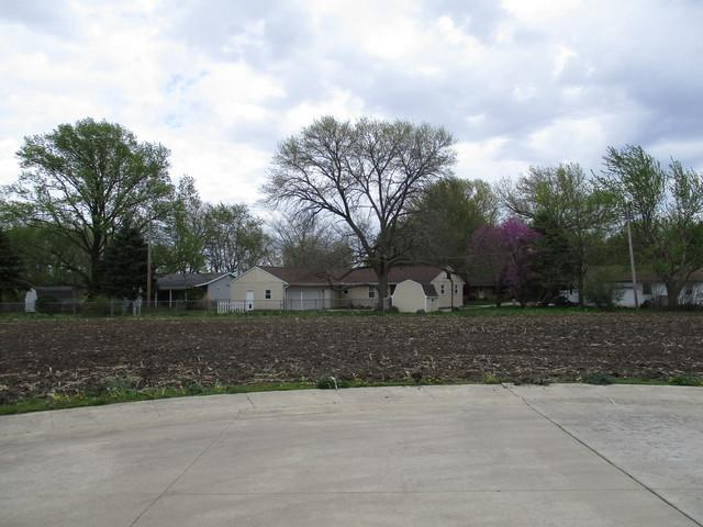 Lot 8 Fina Drive, Tuscola, IL 61953 (MLS #09487175) :: Berkshire Hathaway HomeServices Snyder Real Estate