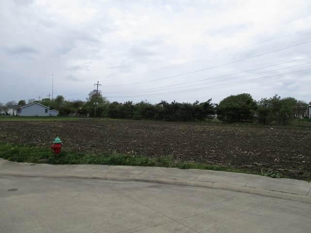 121 Wilshire, Tuscola, IL 61953 (MLS #09487394) :: Ryan Dallas Real Estate