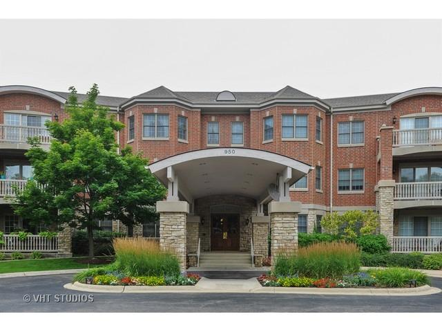 950 Augusta Way #315, Highland Park, IL 60035 (MLS #09518243) :: Domain Realty