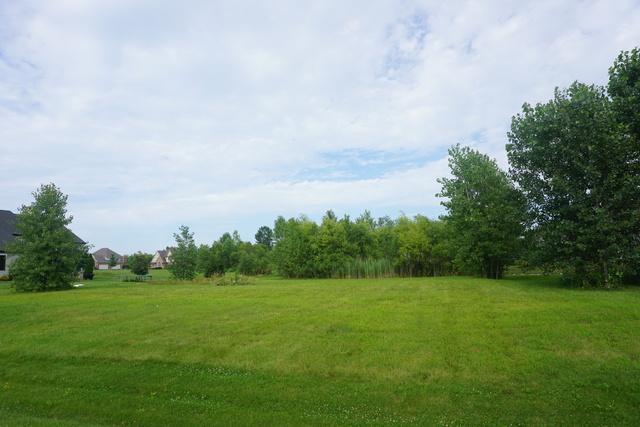 LOT 27 Belfield Drive, Lakewood, IL 60014 (MLS #09606145) :: The Wexler Group at Keller Williams Preferred Realty