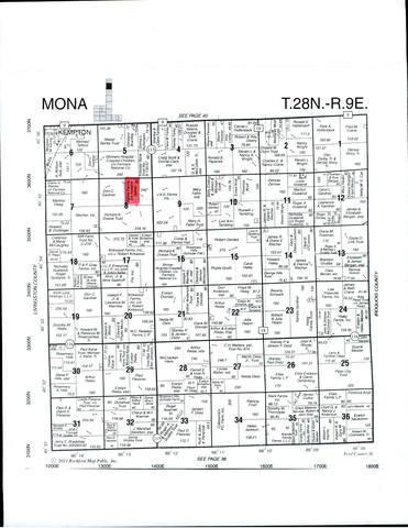 Sec 8 Twp 28N, R 9E, Kempton, IL 60946 (MLS #09613096) :: The Dena Furlow Team - Keller Williams Realty