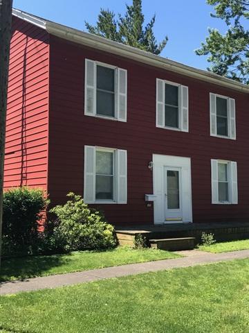 207 E Crittenden Street, HOMER, IL 61849 (MLS #09641908) :: Littlefield Group