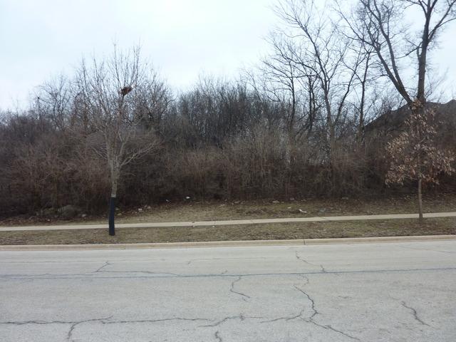 9250 Forest Edge Drive, Burr Ridge, IL 60527 (MLS #09645468) :: Suburban Life Realty