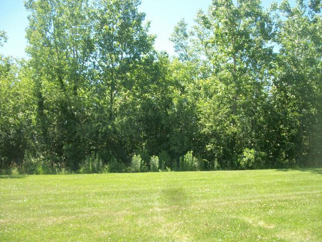 Lot 1 Logue Circle, Seneca, IL 61360 (MLS #09652514) :: Property Consultants Realty