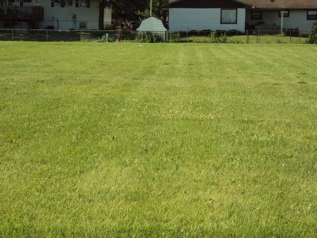 1638 E Grove Avenue E, Rantoul, IL 61866 (MLS #09654530) :: The Dena Furlow Team - Keller Williams Realty