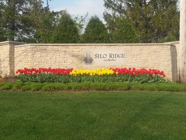 Lot # 38 Silo Ridge Road, Orland Park, IL 60462 (MLS #09662022) :: Lewke Partners