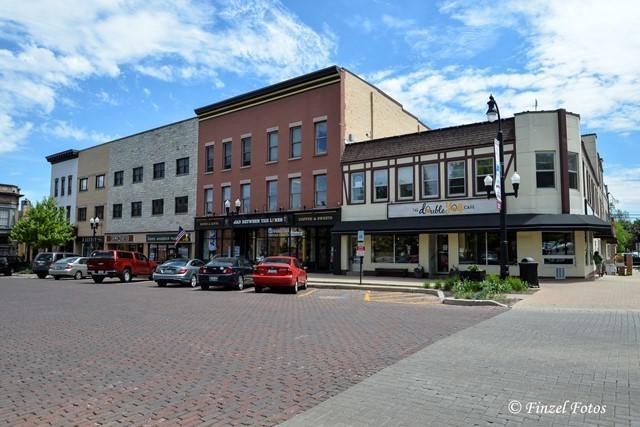 111 Van Buren Street, Woodstock, IL 60098 (MLS #09665602) :: Lewke Partners
