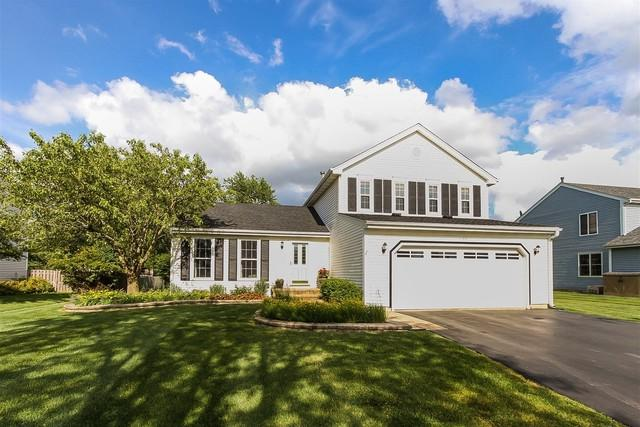 1177 Kylemore Drive, Lake Zurich, IL 60047 (MLS #09669830) :: The Jacobs Group