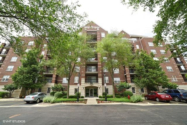 470 W Mahogany Court #202, Palatine, IL 60067 (MLS #09670161) :: The Jacobs Group