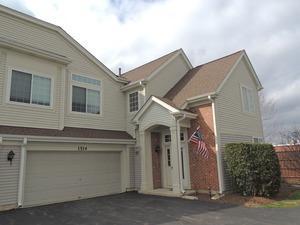 1514 N Waterbury Circle #1514, Palatine, IL 60074 (MLS #09670388) :: The Jacobs Group