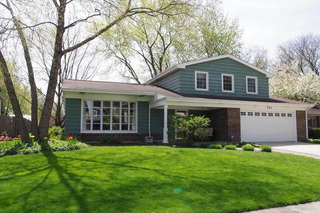 743 E Mill Valley Road, Palatine, IL 60074 (MLS #09670909) :: The Jacobs Group