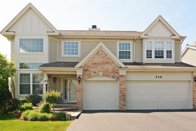 549 E Home Avenue, Palatine, IL 60074 (MLS #09671101) :: The Jacobs Group