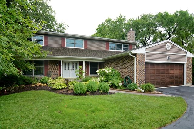 1109 N Perry Drive, Palatine, IL 60067 (MLS #09671105) :: The Jacobs Group