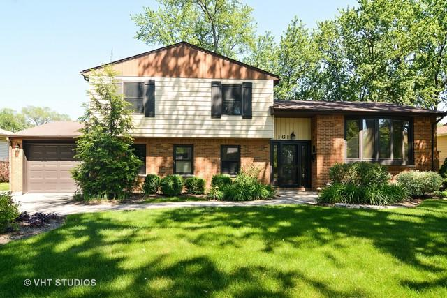 161 N Norman Drive, Palatine, IL 60074 (MLS #09671111) :: The Jacobs Group