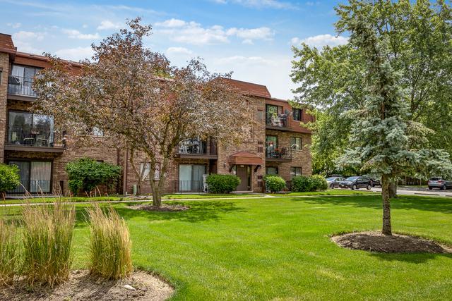109 W Brandon Court E16, Palatine, IL 60067 (MLS #09671275) :: The Jacobs Group