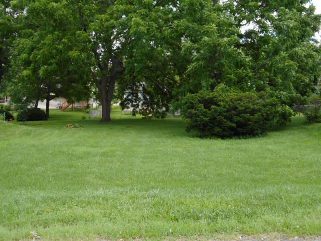 Lot 8 Tappan Street, Woodstock, IL 60098 (MLS #09671794) :: Lewke Partners
