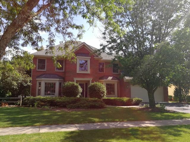 448 Gateshead Drive, Naperville, IL 60565 (MLS #09677877) :: The Dena Furlow Team - Keller Williams Realty