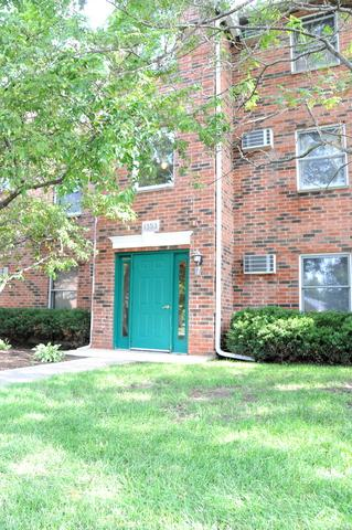 1353 Cunat Court 2B, Lake In The Hills, IL 60156 (MLS #09680093) :: The Jacobs Group