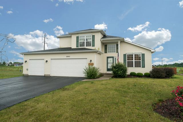26463 Wild Rose Drive, Channahon, IL 60410 (MLS #09682897) :: The Wexler Group at Keller Williams Preferred Realty