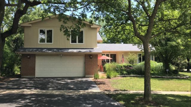 843 Hutchison Road, Flossmoor, IL 60422 (MLS #09686897) :: The Wexler Group at Keller Williams Preferred Realty