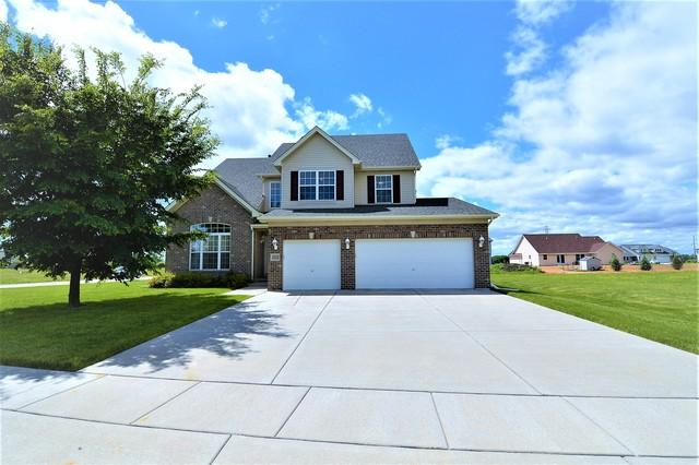 27233 Red Wing Lane, Channahon, IL 60410 (MLS #09691445) :: The Wexler Group at Keller Williams Preferred Realty