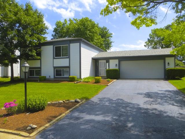 73 Asbury Lane, Cary, IL 60013 (MLS #09695178) :: Key Realty