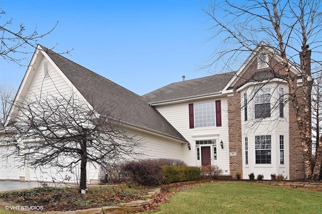 20 Dorchester Court, Hawthorn Woods, IL 60047 (MLS #09695368) :: The Schwabe Group