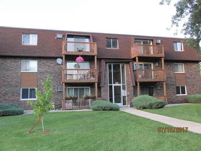 19380 Wolf Road #9, Mokena, IL 60448 (MLS #09695868) :: The Wexler Group at Keller Williams Preferred Realty