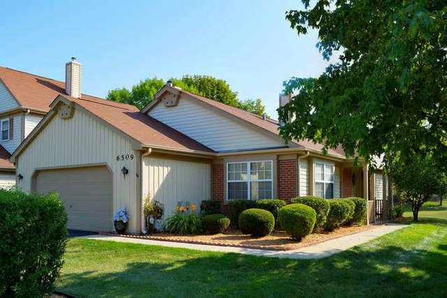 6509 Barclay Court #1, Downers Grove, IL 60516 (MLS #09696509) :: The Dena Furlow Team - Keller Williams Realty