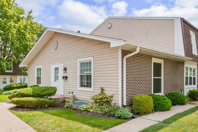 1344 Woodcutter Lane A, Wheaton, IL 60187 (MLS #09696875) :: The Dena Furlow Team - Keller Williams Realty