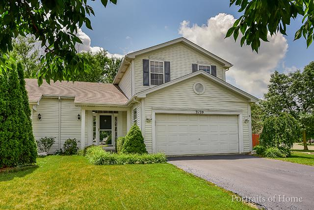 2129 Ingersoll Court, Plainfield, IL 60586 (MLS #09697015) :: The Dena Furlow Team - Keller Williams Realty