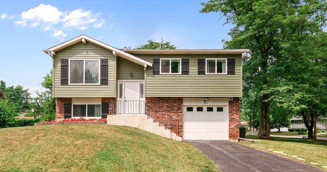 215 Monterey Court, Bolingbrook, IL 60440 (MLS #09697197) :: The Dena Furlow Team - Keller Williams Realty