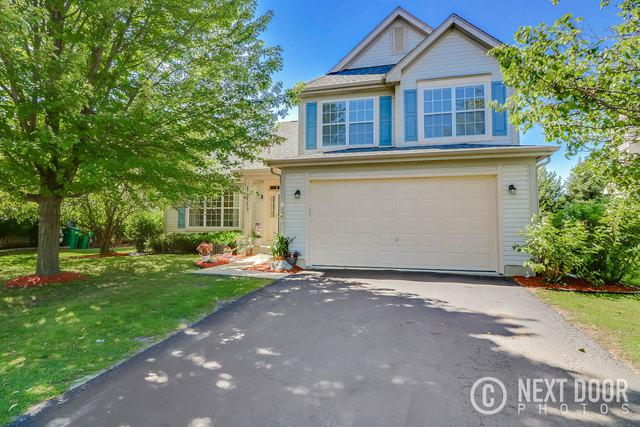 11713 S Derby Lane, Plainfield, IL 60585 (MLS #09697308) :: The Dena Furlow Team - Keller Williams Realty