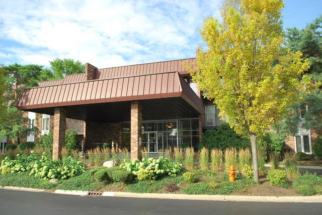 1041 W Ogden Avenue #128, Naperville, IL 60563 (MLS #09697325) :: The Dena Furlow Team - Keller Williams Realty