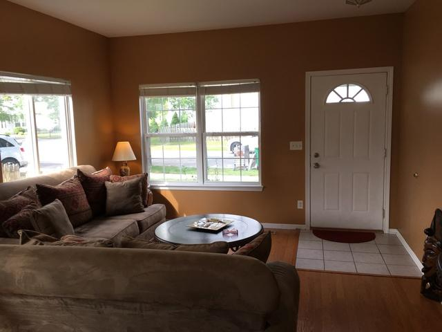 14002 Emerson Court, Plainfield, IL 60544 (MLS #09697508) :: Property Consultants Realty