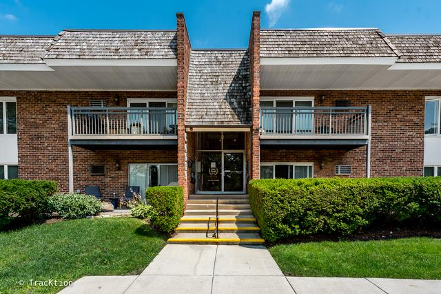 4039-C Saratoga Avenue #224, Downers Grove, IL 60515 (MLS #09697567) :: The Wexler Group at Keller Williams Preferred Realty