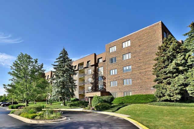 453 Raintree Drive 2C, Glen Ellyn, IL 60137 (MLS #09697671) :: The Wexler Group at Keller Williams Preferred Realty