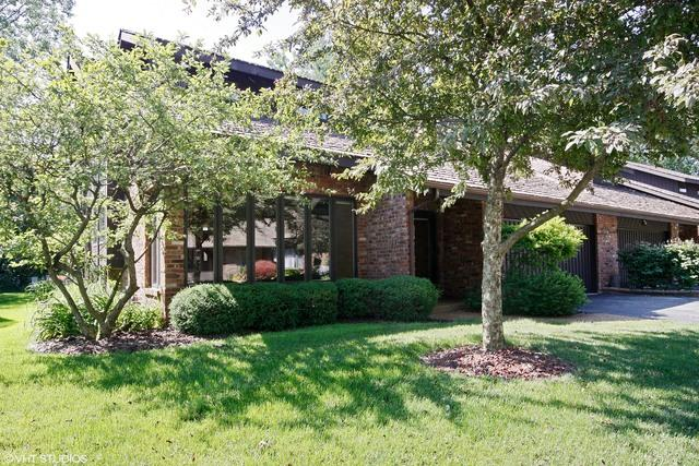 42 Lucas Drive, Palos Hills, IL 60465 (MLS #09697857) :: The Wexler Group at Keller Williams Preferred Realty