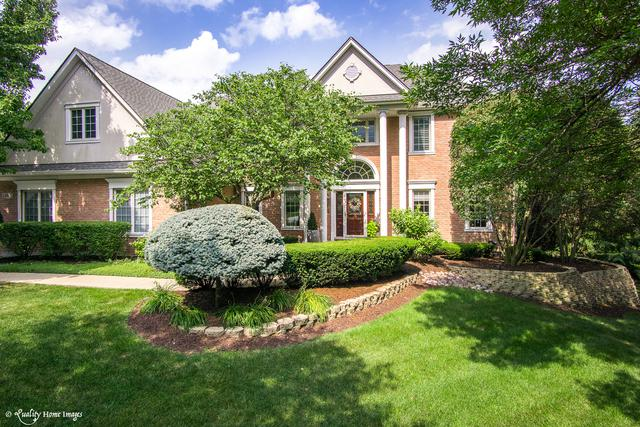 14901 Crystal Springs Court, Orland Park, IL 60467 (MLS #09698166) :: The Wexler Group at Keller Williams Preferred Realty