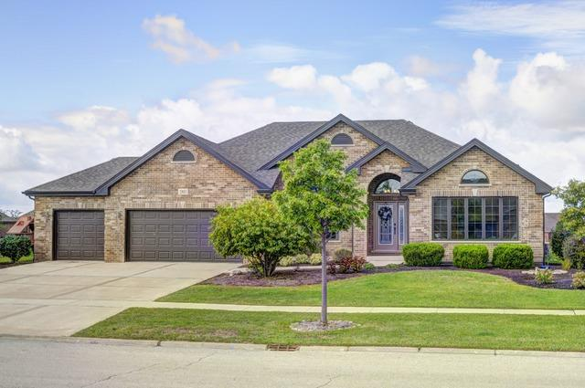 2813 Cole Lane, New Lenox, IL 60451 (MLS #09698295) :: The Wexler Group at Keller Williams Preferred Realty