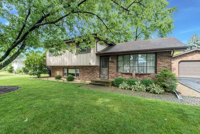 1243 Raymond Street, Joliet, IL 60431 (MLS #09698312) :: Ani Real Estate